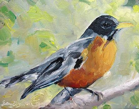 American Robin by Susan E Jones