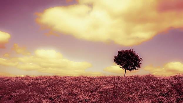 Amethyst Skies by Karl Anderson
