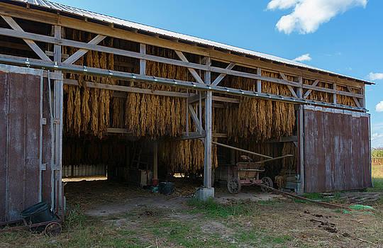 Amish Barn by Dennis Reagan