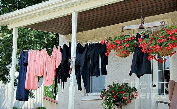 Amish Clothesline by Beth Ferris Sale
