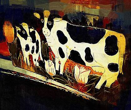 Amish Cows by Robert Smerecki