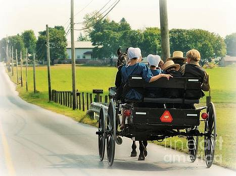 Amish Family Travelling With Horse And Buggy by Beth Ferris Sale