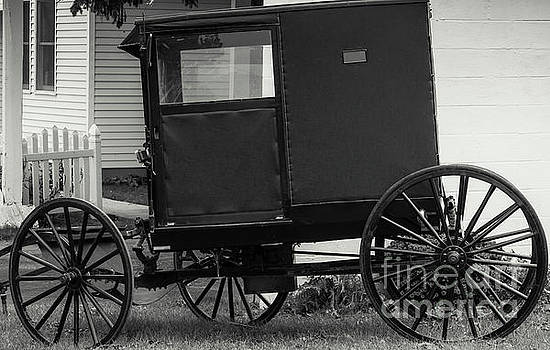 Amish Wagon _PA by Kathleen K Parker