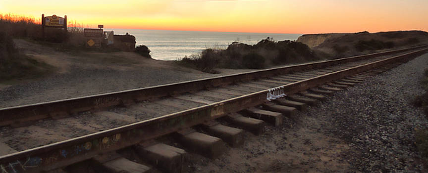 Amtrak on the Pacific by Grace Dillon