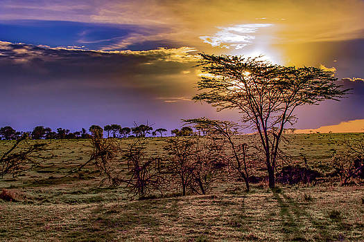 An African Sunset by Janis Knight