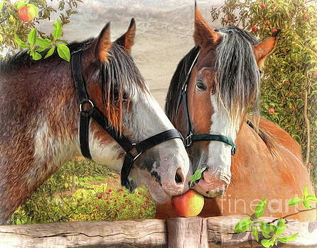 An Apple A Day  by Trudi Simmonds