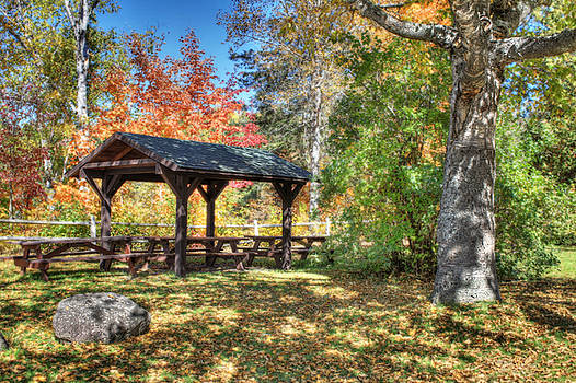 An Autumn Picnic in Maine by Shelley Neff