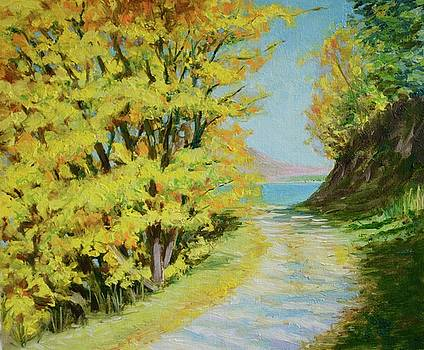 An autumnal walk beside Lake Wakatipu by Dai Wynn