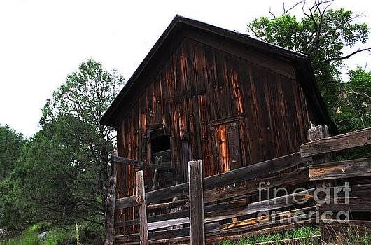 An Old Rustic Barn by Natalie Ortiz