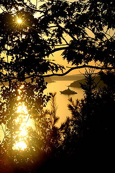 Anchorage In Frenchman Bay by Charles Shedd