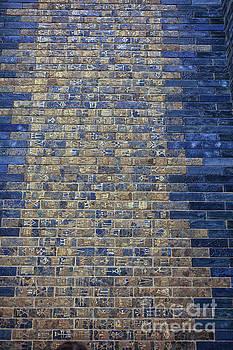 Patricia Hofmeester - Ancient Babylonian inscriptions