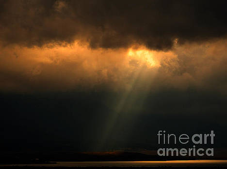 And Let There Be Light by Janice Westerberg