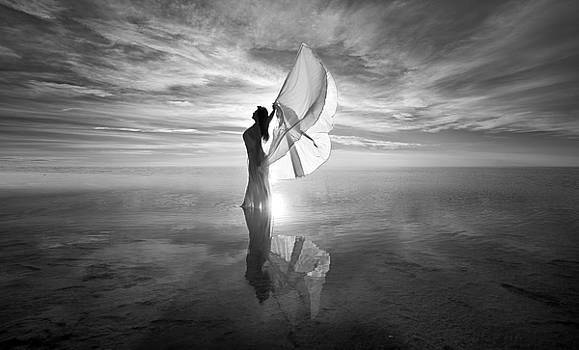 Angel BW by Dario Infini