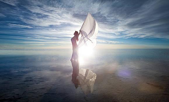 Angel by Dario Infini