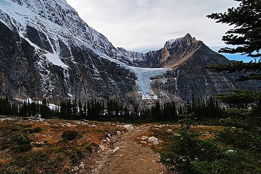 Larry Ricker - Angel Glacier