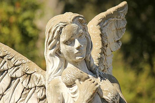 Angel in Mississippi by Lynn Jordan