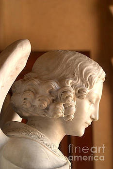 Angelic Profile At St. Peter And Paul Catholic Church In San Franciso  by Michael Hoard