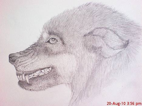 Angry Wolf by Jaiteg Singh