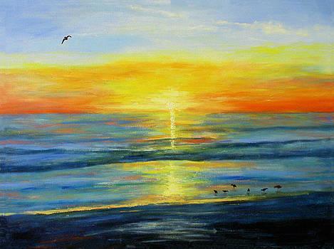 Anna Maria Island Sunset by Alexis Baranek