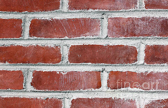 Another Brick in the Wall by Denise Pohl