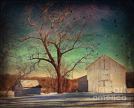Another winter day  by Delona Seserman