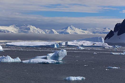 Antarctic peninsula by Andrei Fried