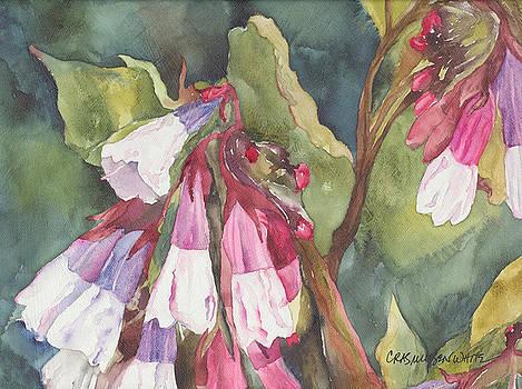 Antebellum by Casey Rasmussen White