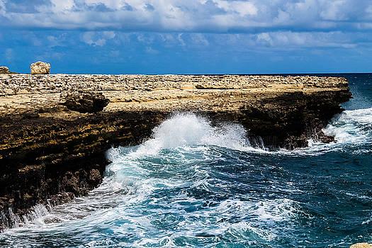 Antigua Shoreline by Karl Anderson
