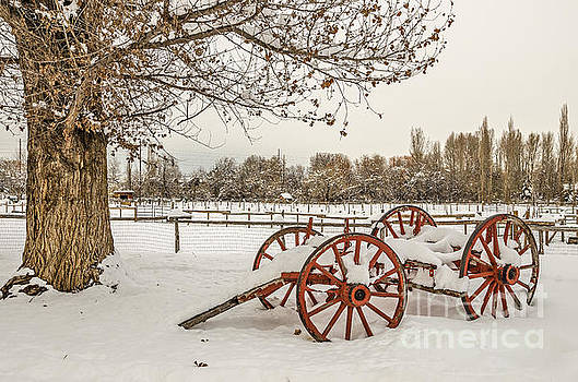 Antique Cart with Snow by Sue Smith