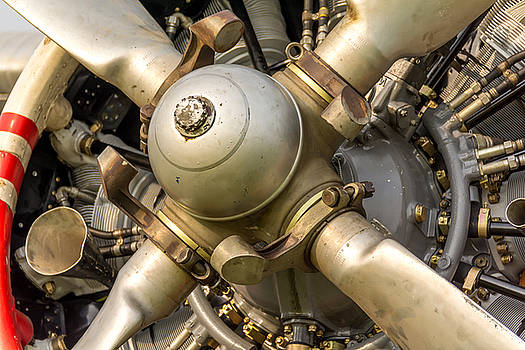 Antonov AN-2 Powerplant by Guy Whiteley