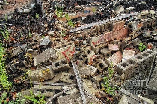 Walter Oliver Neal - Apocalypse Detroit 8