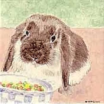 Apollo Bunny by Dy Witt