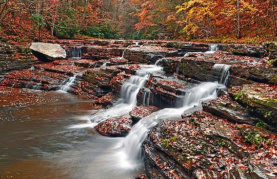 Appalachian Falls by Lj Lambert