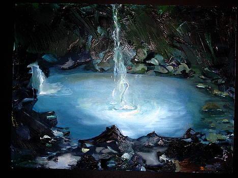 Appalachian Pool by Judy  Blundell