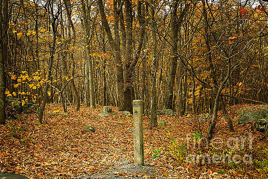 Appalachian Trail in Shenandoah National Park in October by Louise Heusinkveld