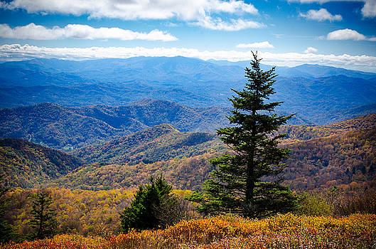 Appalachian Trail View by Debbie Karnes