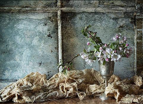 Apple Blossom by Nichon Thorstrom