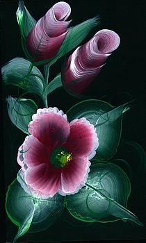 Apple blossom by Valerie Vanorden