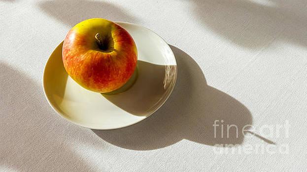 BERNARD JAUBERT - Apple shadow