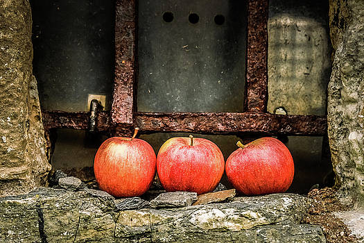 Apples In The Window by Anne Macdonald