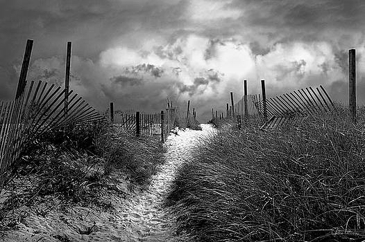 Approaching Storm by John Rivera