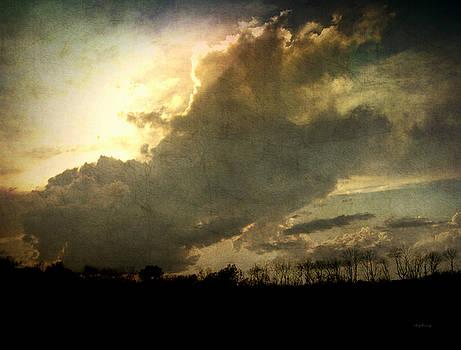 Apres la tempete by Cynthia Lassiter