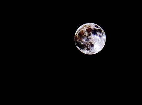 April Full Moon  by Scott Carlton