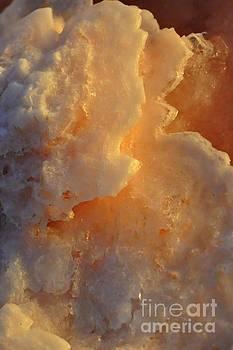 Salt by Sylvie Leandre
