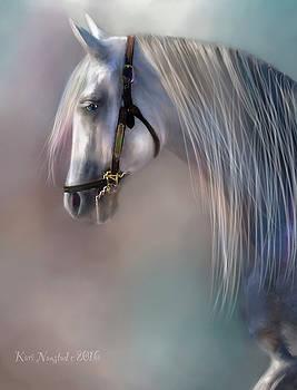 Arabian Grey by Kari Nanstad