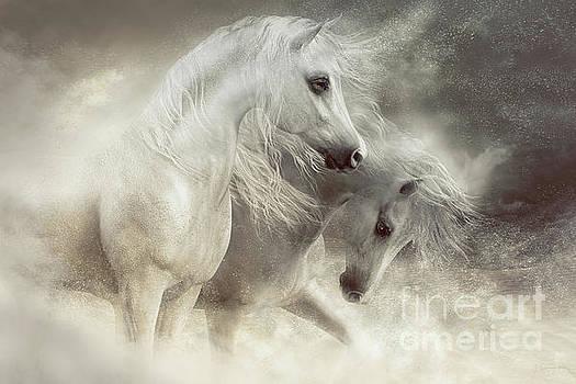 Arabian Horses Sandstorm by Shanina Conway