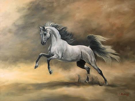 Arabian by Jeanne Newton Schoborg