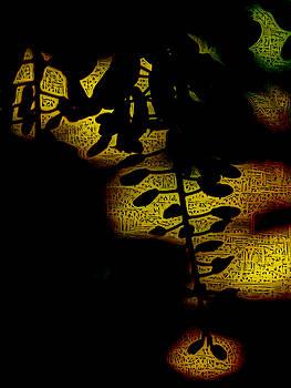 Arabian Nights by Steve Taylor