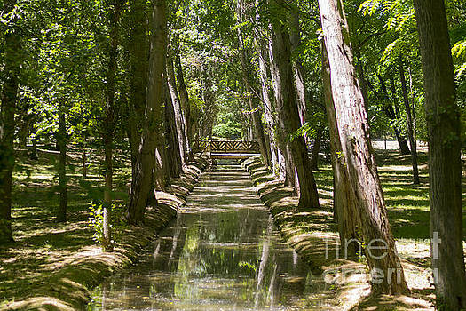 Aranjuez park canals by Stefano Piccini