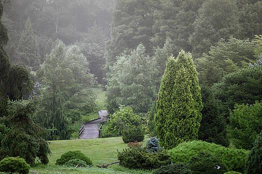 Arboretum Beauty by Victoria Winningham